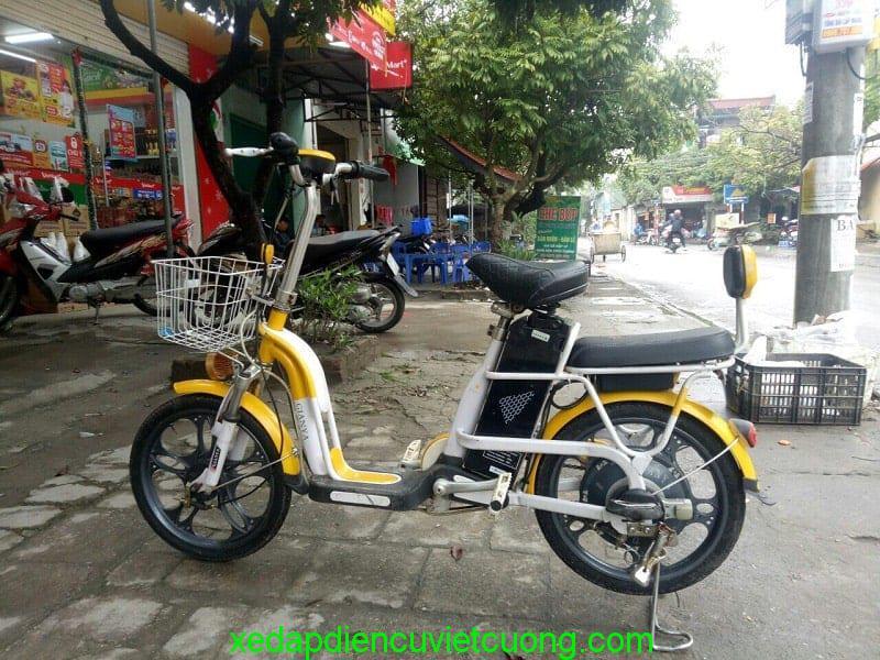 xe đạp điện nhật